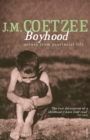 Image for Boyhood  : scenes from provincial life
