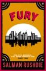 Image for Fury  : a novel