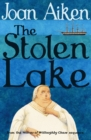 Image for The stolen lake
