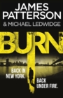 Image for Burn : (Michael Bennett 7)