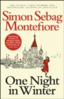 Image for One night in winter
