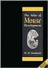 Image for The Atlas of Mouse Development