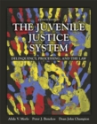 Image for The juvenile justice system  : delinquency, processing, and the law