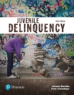Image for Juvenile delinquency