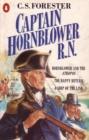 Image for Captain Hornblower RN