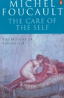 Image for The history of sexualityVol. 3: The care of the self