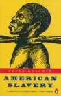 Image for American slavery, 1619-1877