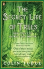 Image for The secret life of trees  : how they live and why they matter