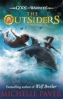 Image for The outsiders