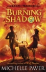 Image for The burning shadow
