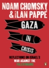 Image for Gaza in crisis  : reflections on Israel's war against the Palestinians