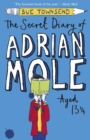 Image for The secret diary of Adrian Mole aged 13 3/4