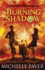 Image for The burning shadow : 2