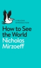 Image for How to see the world