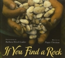 Image for If You Find a Rock