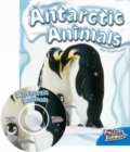 Image for Antarctic Animals
