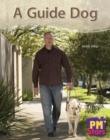 Image for A Guide Dog