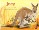 Image for PM GREEN JOEY PM STORYBOOKS LEVEL 14