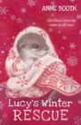 Image for Lucy's winter rescue