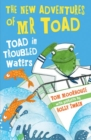 Image for Toad in troubled waters