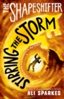Image for Stirring the storm