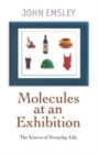 Image for Molecules at an exhibition  : portraits of intriguing materials in everyday life