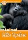 Image for Animal life cycles