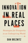 Image for Innovation in real places  : strategies for prosperity in an unforgiving world