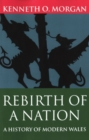Image for Rebirth of a nation  : a history of modern Wales