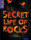Image for Secret life of rocks