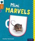 Image for Mini marvels