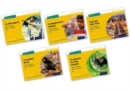 Image for Read Write Inc. Phonics: Yellow Set 5 Non-fiction Mixed Pack of 5
