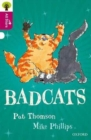 Image for Oxford Reading Tree All Stars: Oxford Level 10 Badcats : Level 10