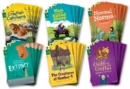 Image for Oxford Reading Tree All Stars: Oxford Level 12                        : Class Pack of 36 (4a)