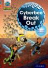 Image for Cyberbee breakout