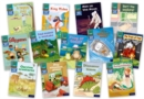 Image for Read Write Inc. Phonics Book Bag Books: Grey  Set 7 Storybooks Mixed Pack of 13