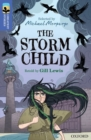 Image for The storm child