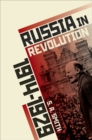 Image for Russia in revolution  : an empire in crisis, 1890 to 1928