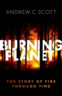 Image for Burning planet  : the story of fire through time