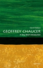 Image for Geoffrey Chaucer  : a very short introduction