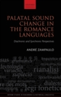 Image for Palatal sound change in the Romance languages  : diachronic and synchronic perspectives
