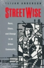 Image for StreetWise  : race, class, and change in an urban community
