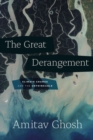 Image for The great derangement  : climate change and the unthinkable