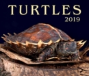 Image for Turtles 2019