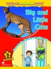 Image for Macmillan Children's Readers Big and Little Cats Level 3