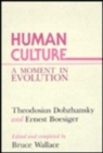Image for Human Culture : A Moment in Evolution