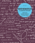 Image for Mathematics  : a curious history