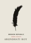 Image for Broken republic  : three essays
