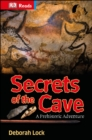 Image for Secrets of the cave: a prehistoric adventure