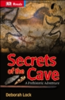 Image for Secrets of the Cave